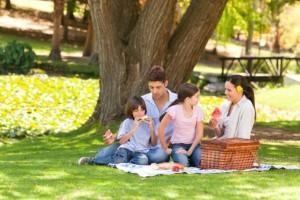 Family Picnik in Greenville's Park